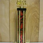 Trophy 467 Size and color of column can be customized