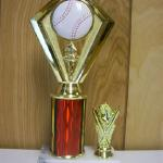 Trophy 647 Size and color of column can be customized