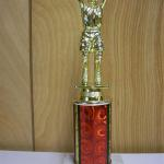 Trophy 041 Size and color of column can be customized