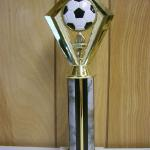 Trophy 234 Size and color of column can be customized